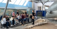 Biologie-Exkursion zum Thema Evolution ins Rosensteinmuseum